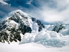 Avalanche!, Denali National Park, Alaska